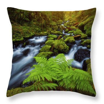 Throw Pillow featuring the photograph Gorton Creek Fern by Darren White