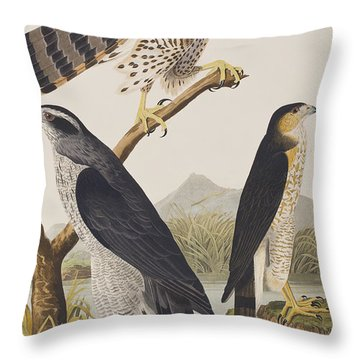 Goshawk And Stanley Hawk Throw Pillow