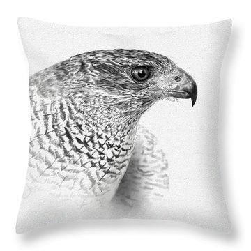 Goshawk Throw Pillow