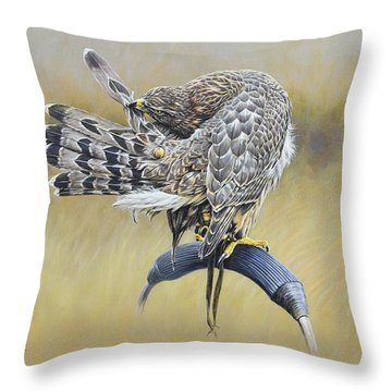 Throw Pillow featuring the painting Goshawk Preening by Alan M Hunt