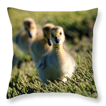 Gosling March Throw Pillow