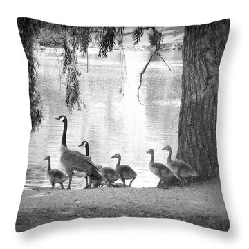 Goslings Bw7 Throw Pillow by Clarice Lakota