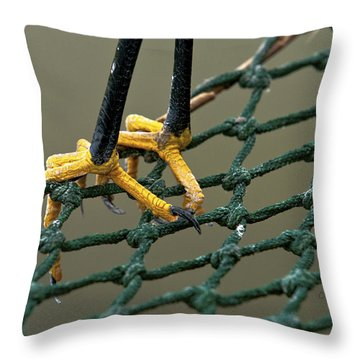 Got A Grip Throw Pillow by Christopher Holmes
