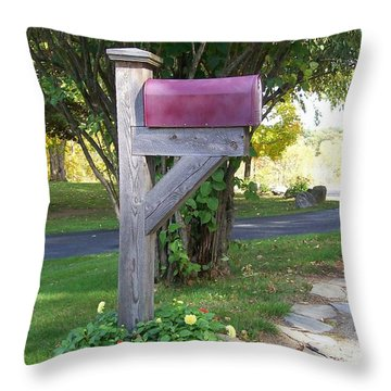 Got Mail Throw Pillow
