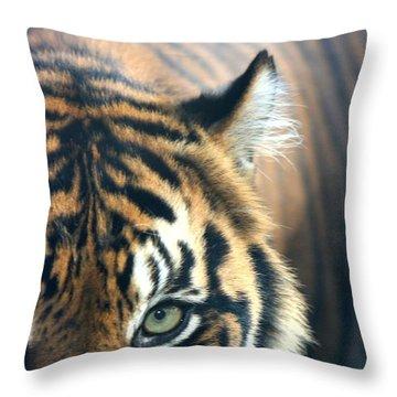 Got My Eye On You Throw Pillow