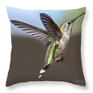 Got My Eye On You Throw Pillow by David Millenheft