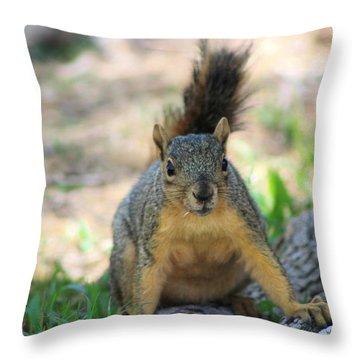 Got To Run Throw Pillow by Colleen Cornelius