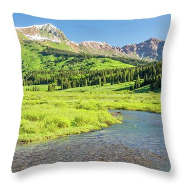 Throw Pillow featuring the photograph Gothic Valley - Morning by Eric Glaser