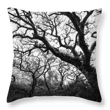 Gothic Woods II Throw Pillow by Marco Oliveira