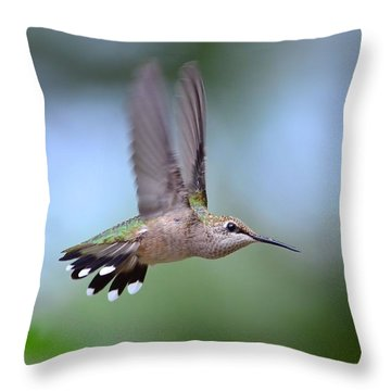 Gotta Go Throw Pillow