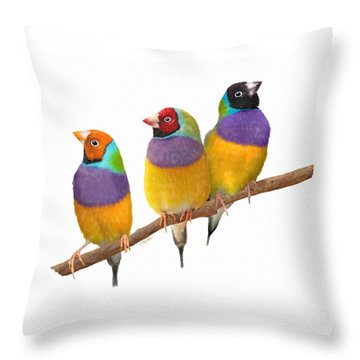 Gouldian Finches Throw Pillow