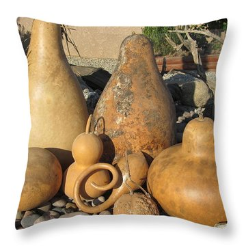 Gourds In The Sun Throw Pillow