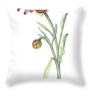 Gousblom Throw Pillow by Heidi Kriel