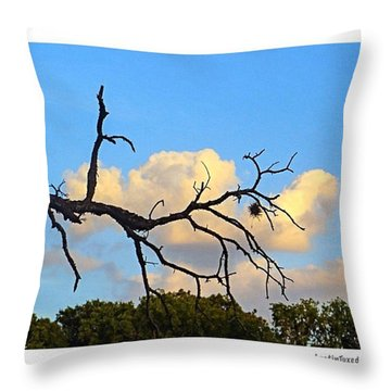 #grace And #beauty In The #texas #sky Throw Pillow