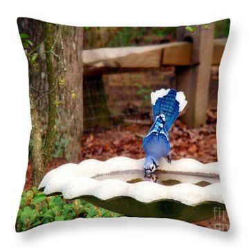Grace And Beauty Throw Pillow by Sue Melvin