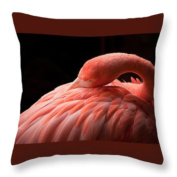 Grace Throw Pillow by Craig Szymanski