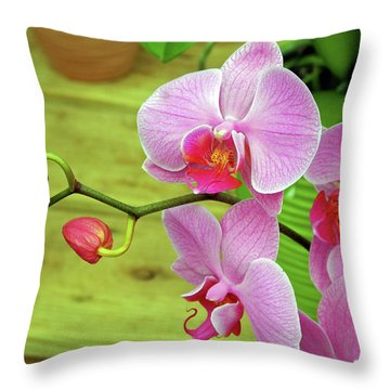 Throw Pillow featuring the photograph Grace In Space by Lynda Lehmann