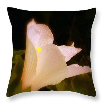Grace Throw Pillow by Priscilla Richardson