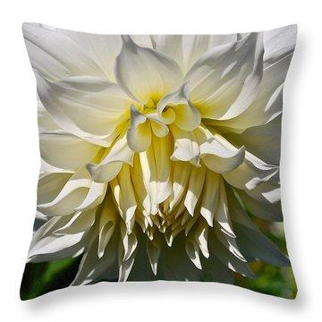 Graceful Dahlia  Throw Pillow