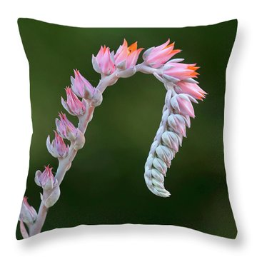 Graceful Throw Pillow by Elvira Butler