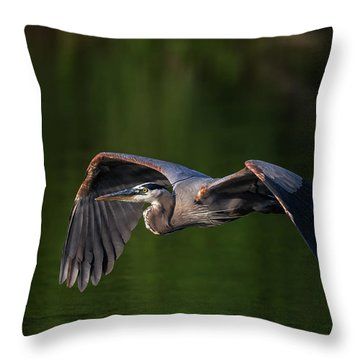 Throw Pillow featuring the photograph Graceful Flight by Everet Regal