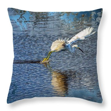 Throw Pillow featuring the photograph Graceful Hunter 2 by John M Bailey
