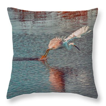 Throw Pillow featuring the photograph Graceful Hunter by John M Bailey