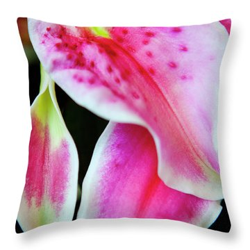 Graceful Lily Series 31 Throw Pillow by Olga Smith
