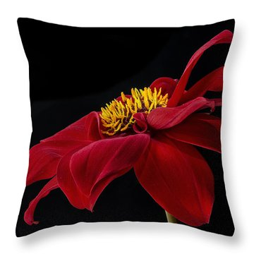 Graceful Red Throw Pillow