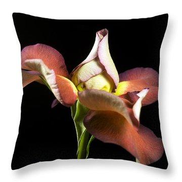 Graceful Rose Petals Throw Pillow