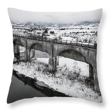 Graceful Waterways Throw Pillow by Justin Johnson