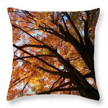 Gracious Presence Throw Pillow
