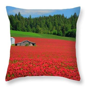 Grain Bins Barn Red Clover Throw Pillow