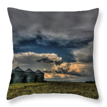 Grain Bins Throw Pillow