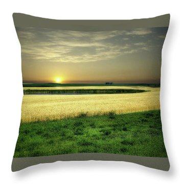 Grain Field Throw Pillow