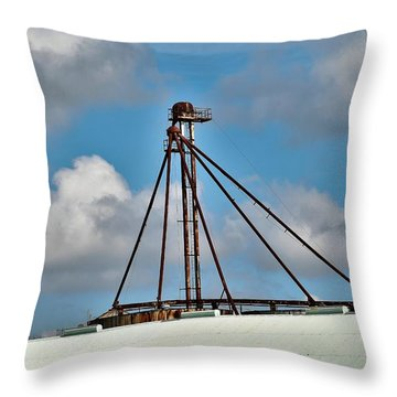 Throw Pillow featuring the photograph Grain Is Life ...  by Ray Shrewsberry