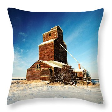 Granary Chill Throw Pillow