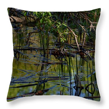 Grand Beach Marsh Throw Pillow