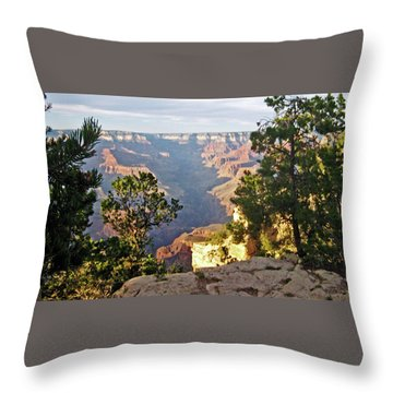 Grand Canyon No. 1 Throw Pillow by Sandy Taylor