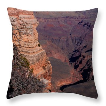 Throw Pillow featuring the photograph Grand Canyon 11 by Donna Corless