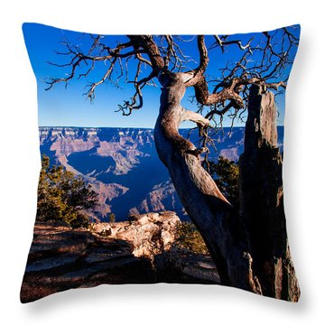 Throw Pillow featuring the photograph Grand Canyon 27 by Donna Corless