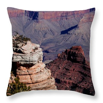 Throw Pillow featuring the photograph Grand Canyon 3 by Donna Corless