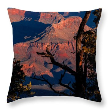 Throw Pillow featuring the photograph Grand Canyon 30 by Donna Corless
