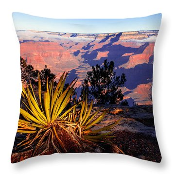 Throw Pillow featuring the photograph Grand Canyon 31 by Donna Corless