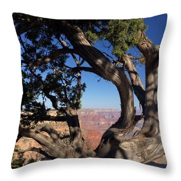 Grand Canyon No. 6 Throw Pillow by Sandy Taylor