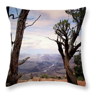 Grand Canyon, Az Throw Pillow