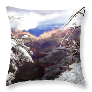 Grand Canyon Branch Throw Pillow