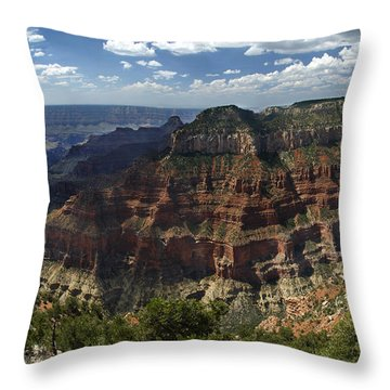 Grand Canyon North Rim Throw Pillow