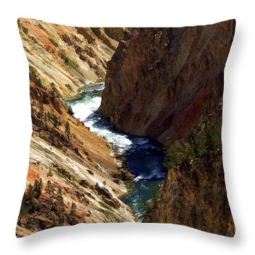 Grand Canyon Of The Yellowstone 1 Throw Pillow by Marty Koch