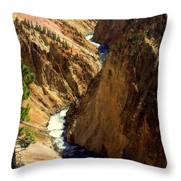 Grand Canyon Of The Yellowstone 2 Throw Pillow by Marty Koch